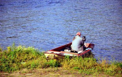 Akcija uređenja priobalja reke Tise