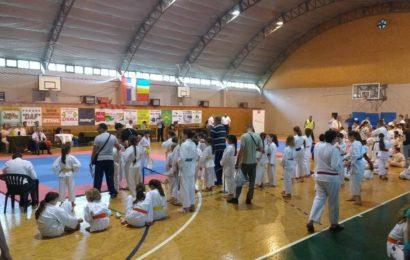 Karate turnir Titelski pobednik okupio 200 takmičara