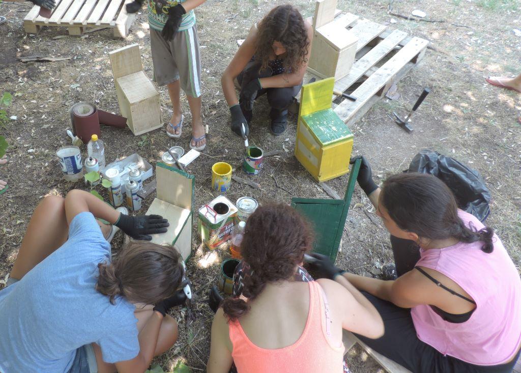 medjunarodni ekoloski kamp titelski breg 2017