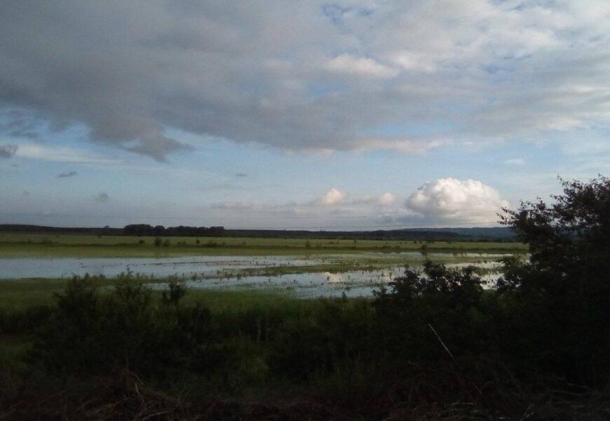 Nakon obilnih kiša, stanje u Titelu i Šajkašu pod kontrolom