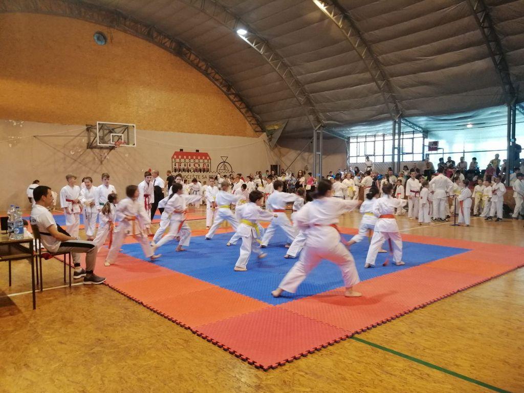 titelski pobednik 2019 karate klub titel